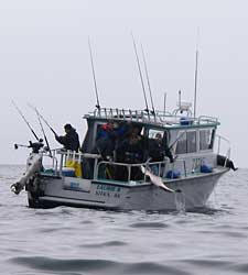 Deep Sea Charters Oregon Fishing Salt Water